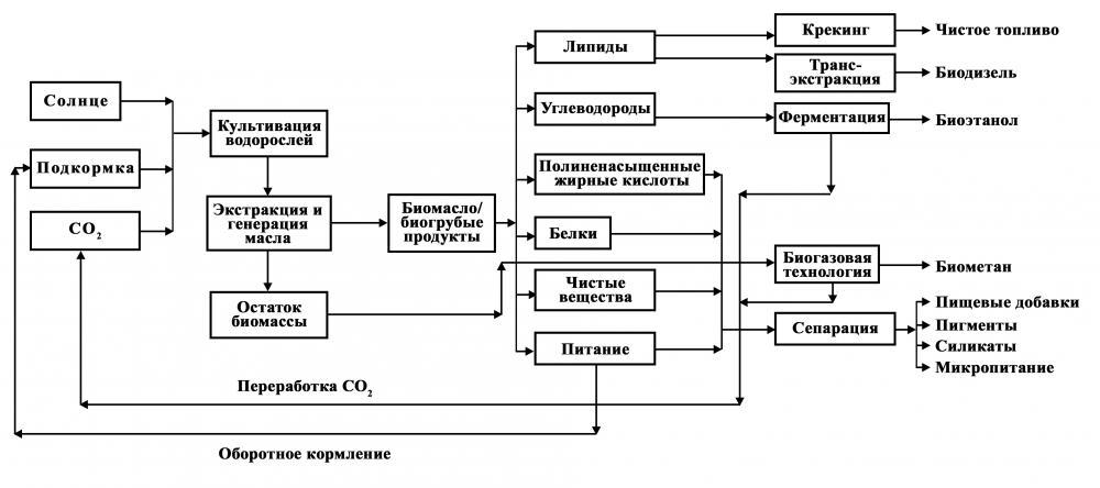 схем переработки биомассы