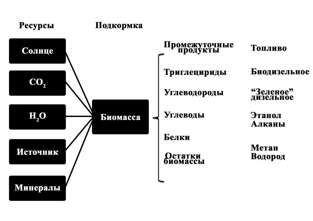 3 показана общая схема